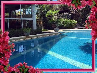 The Zoo - Fully enclosed pool-safe,3 bd/bth AC villa/pool WIFI Seminyak - Seminyak vacation rentals