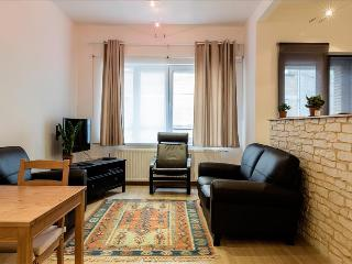 Nice 1 bedroom Brussels Condo with Central Heating - Brussels vacation rentals