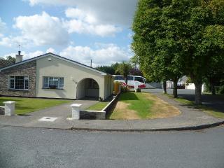 'Home At Last'  in the Garden Of Ireland - Wicklow vacation rentals