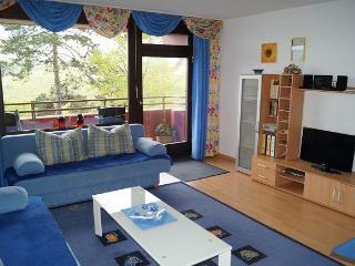 Ferienwohnung Fäseke mit Hallenbad - Lahnstein vacation rentals