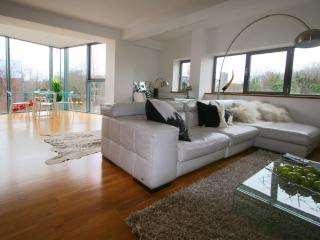 Luxury Ironworks Dace Apartment - London vacation rentals