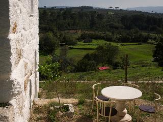 Sunny House with Internet Access and Dishwasher - Fornos de Algodres vacation rentals