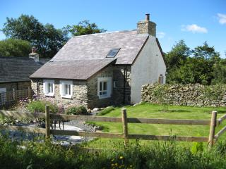 Hen Ffermdy, Banceithin Farm and Holiday Cottages - Llanon vacation rentals