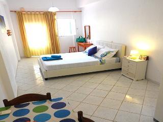 1 bedroom Apartment with Internet Access in Agia Efimia - Agia Efimia vacation rentals