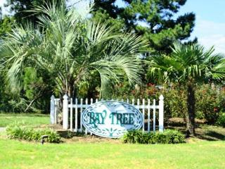 Perfect House with Internet Access and Television - North Myrtle Beach vacation rentals