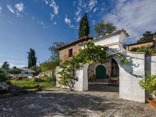 Villa Torricella - 1600s farmhosue - Tavarnuzze vacation rentals