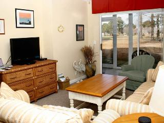 Cozy House with Internet Access and Television - Longs vacation rentals