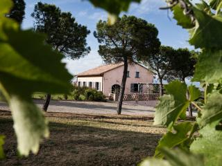 Independent villa in a best part of Tuscany - Montepulciano vacation rentals