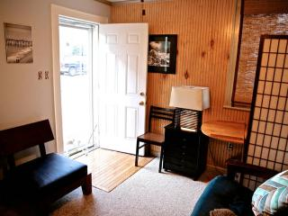 Cozy Gardener's Cabin Near Downtown in Southwest - Roanoke vacation rentals