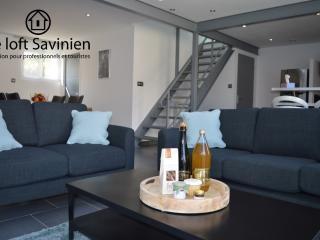 Troyes - Location pour professionnels et touristes - Sainte-Savine vacation rentals