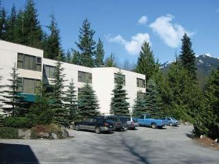 Gorgeous Condo with Internet Access and Television - Whistler vacation rentals