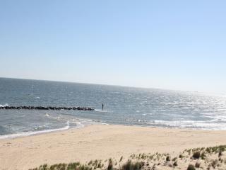 Discover Xscape Loft, a luxury beachfront getaway! - Norfolk vacation rentals