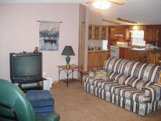 Bright Cabin in Custer with A/C, sleeps 12 - Custer vacation rentals