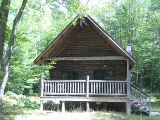 2 bedroom Cabin with Deck in Manistique - Manistique vacation rentals