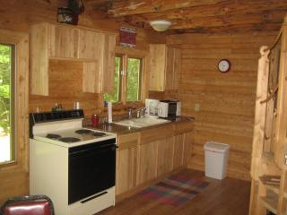 Nice Cabin with Freezer and Television - Manistique vacation rentals