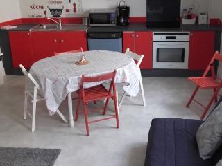 APPT DUPLEX NEUF A 5 min DU SANCTUAIRE (6 pers) - Lourdes vacation rentals