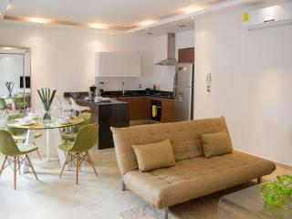 LOVELY NEW 1 BDR Condo Perfect For Couples in Downtown! - Playa del Carmen vacation rentals