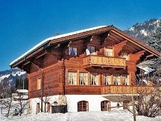 1 bedroom Condo with Short Breaks Allowed in Zweisimmen - Zweisimmen vacation rentals