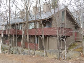 Loon Mt Skiing, Hiking, Swimming, and Relaxing - Lincoln vacation rentals