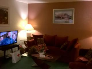 2bedroom2bathnextto SUNCITIES insurprise - Surprise vacation rentals