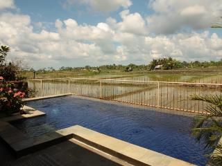 Hibiscus Cottage, Ubud - Gorgeous, spacious - Ubud vacation rentals