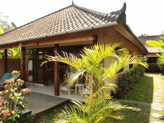 Hibiscus Villa, Ubud - Spacious with infinity pool - Ubud vacation rentals