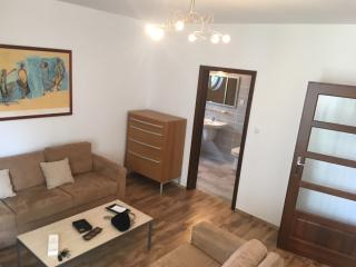 Huge Luxury 4Bedrooms 2Bathrooms - Warsaw vacation rentals