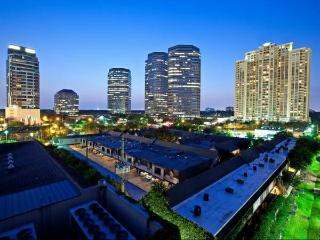 1 BD Upscale Apartment - Houston vacation rentals