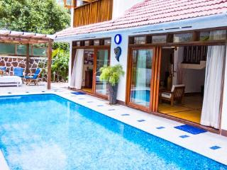 Goa Luxury Villas: Colonial Pool Villa - Candolim vacation rentals