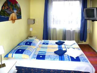 Perfect location,Victor Hugo 25_105 - Budapest vacation rentals
