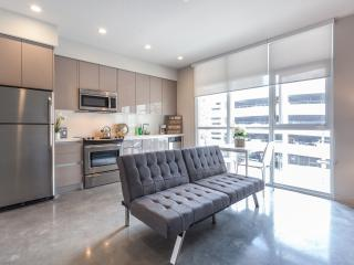 High end 1 Bdrm LA Convention 29 G - Los Angeles vacation rentals