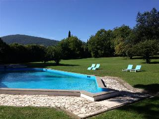 Villa with private Pool and Park with Ancient Ruins! Ideal for Families & Groups, 30km to Rome - Tivoli vacation rentals