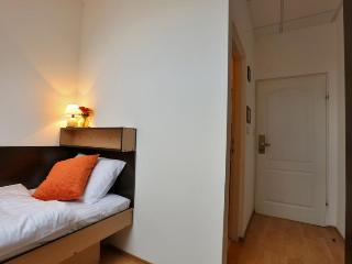 Cosy 14m2 room with bathroom - Zagreb vacation rentals