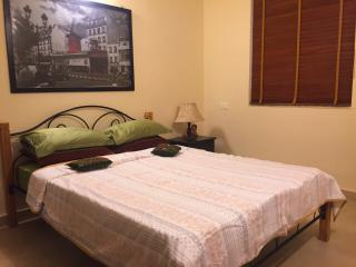 The Souza Apartment - Calangute vacation rentals