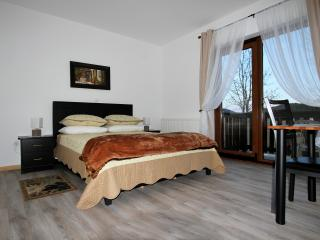 Good Night Apartment 1 - Plitvice - Vrhovine vacation rentals