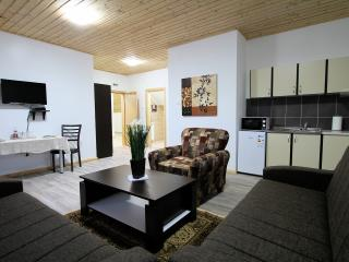Good Night Apartment 3 -Plitvice - Vrhovine vacation rentals