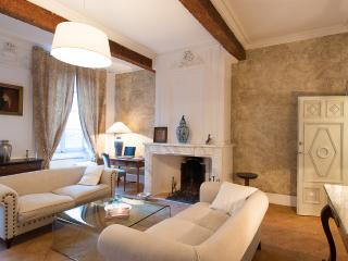 FILATIERS Terrace Parking Citycenter - Toulouse vacation rentals