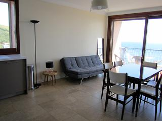 Nice House with Internet Access and A/C - Banyuls-sur-mer vacation rentals