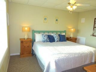 "Ocean View! 2/2 Super Cute Condo  ""Seaside Pearl"" - Port Aransas vacation rentals"