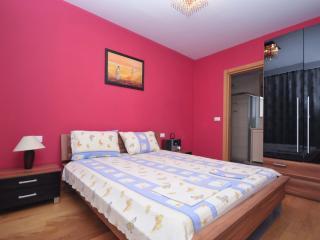 Deluxe threebedroom apartment near the centre Maxi - Budva vacation rentals
