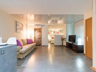 Suites Garden 4 Loft Velázquez - Las Palmas de Gran Canaria vacation rentals