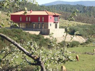 Quinta do Favacal - Agroturismo - Covilha vacation rentals