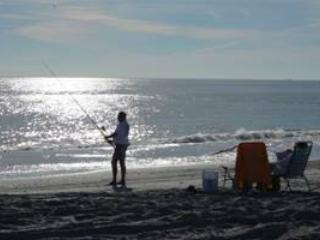 THE BEACH- Great Amenities! Beautiful Beach - Atlantic Beach vacation rentals