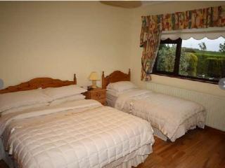 Comfortable 4 bedroom B&B in Dundalk - Dundalk vacation rentals