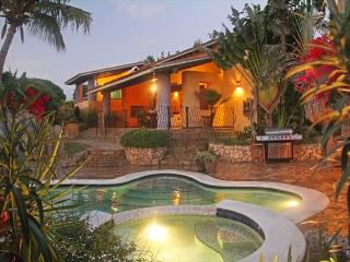Stunning Mexican Style Villa, Pool Swim-up Bar, Jacuzzi, Gym SPECIAL OFFER! - Oranjestad vacation rentals