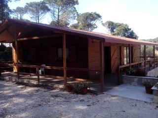 2 bedroom Villa with Parking in Fontanelas - Fontanelas vacation rentals