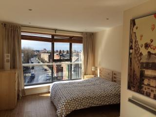 Skyfall - Luxurious Dublin City Penthouse - Private roof terrace - Sleeps 5 - Dublin vacation rentals