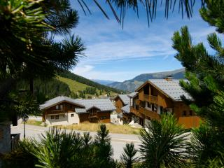 Charming Condo with Internet Access and Balcony - Courchevel vacation rentals