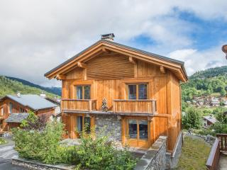 Perfect 4 bedroom Chalet in Les Allues - Les Allues vacation rentals
