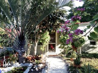 Historic Casa Nokomis nr. Beach Venice Bike Trail - Nokomis vacation rentals